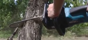 Как выбрать садовый инструмент для дома и дачи